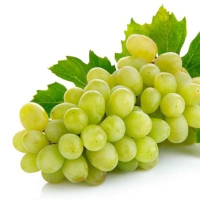 Виноград - фото, изображение