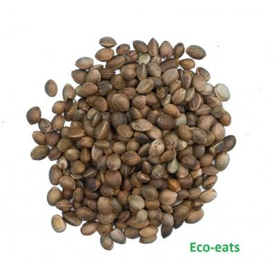 Семена конопли  - фото, изображение