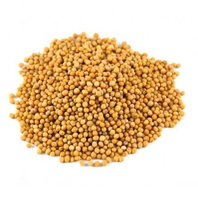 Семена горчицы - фото, изображение